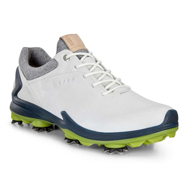 ECCO M GOLF BIOM G3 dark shadowdark petrol Golf Team